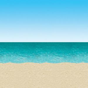 Blue-Sky-Sand-and-Ocean-Scene-Setters-Room-Roll-image