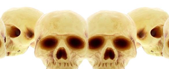 Skulls Party Supplies