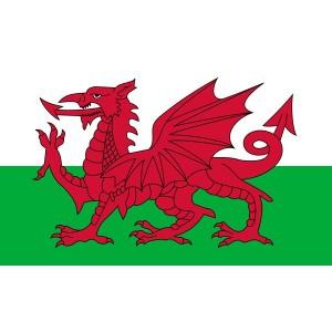 Welsh-Flag-5ft-x-3ft-image-e1407470993354