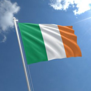 St Patricks Day Flag - Partyrama