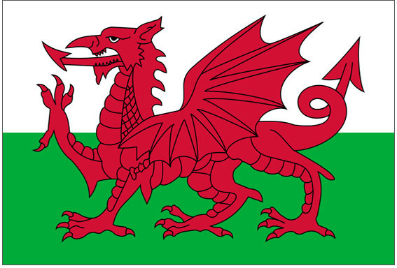 Buy Welsh Flag at Partyrama