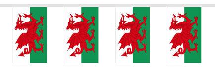 Welsh Flag Bunting at Partyrama