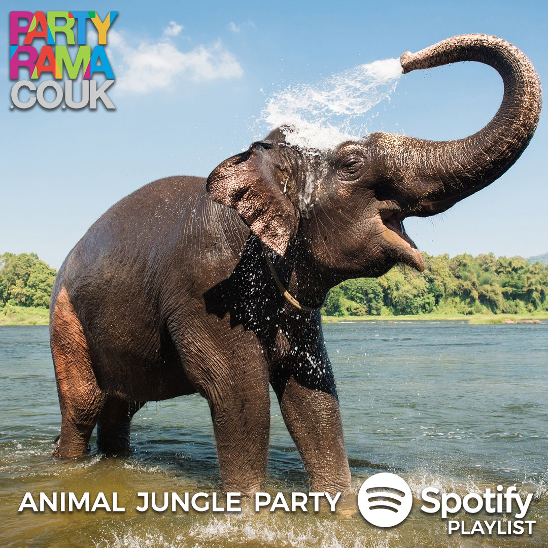 Animal Party Music - Spotify Playlist
