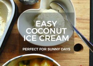 Easy Coconut Ice Cream Recipe