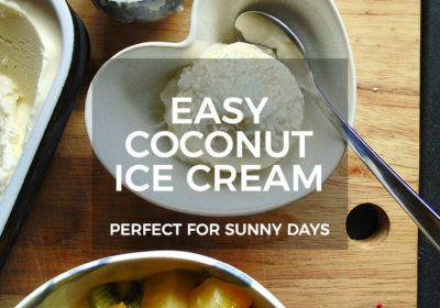 Easy Coconut Ice Cream Recipe